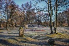 冬天Clava石标` s视图  库存照片