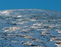 冬天Dovrefjell在挪威 免版税库存照片