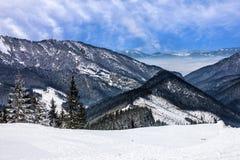 冬天Tatry风景,森林,斯洛伐克 免版税图库摄影