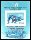 冬奥会,卡尔加里 免版税库存图片