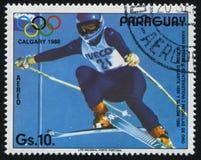 冬季奥运会的埃丽卡赫斯在卡尔加里 库存照片