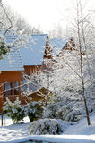 冬日在国家 库存图片