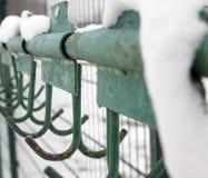 冬时,特写镜头 免版税图库摄影