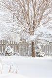 冬景花园门 库存照片