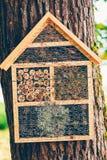 冬眠的昆虫的手工制造家 免版税库存照片