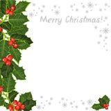 冬青树,分支 与冬青树的装饰元素 库存图片