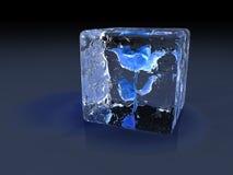 冰上升了 免版税图库摄影