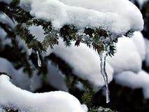 冰冷的下落 库存照片
