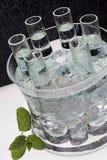 冰冷的伏特加酒射击 免版税库存图片