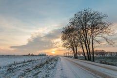 冰冷的冬天路在荷兰 免版税库存照片