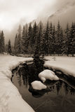 冰冷的小河 库存图片