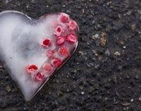 冰冷的心脏用莓果 免版税库存照片