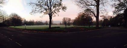 冰冷的早晨 库存照片
