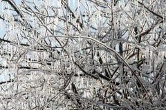 冰冷的曲拱 免版税库存照片