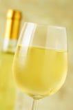 冰冷的杯的特写镜头白葡萄酒 免版税图库摄影