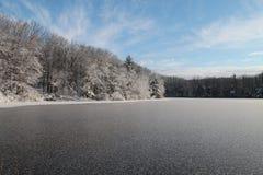 冰冷的池塘 图库摄影