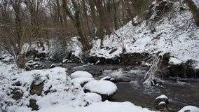 冰冷的河 免版税图库摄影