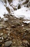 冰冷的河 库存图片