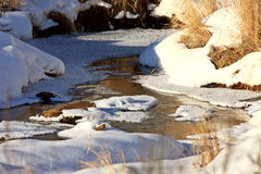 冰冷的流冬天 库存照片