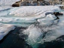 冰冷的游泳 免版税库存图片