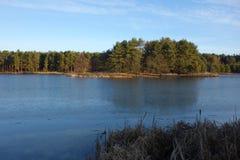 冰冷的湖和森林 库存照片