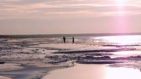 冰冷的石土坎 站立在冬天海的银行的年轻夫妇 股票录像