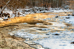 冰冷的金黄小河 库存照片