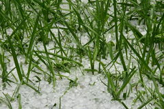 冰冷的雹暴-冰子弹 库存图片
