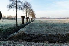 冰冷的风景在秋天 免版税图库摄影