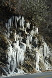 冰周期流行音乐 库存图片