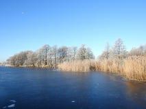 冰和多雪的树的,立陶宛小湖 免版税库存照片