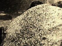 冰和石头 免版税库存照片