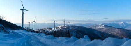 冰和雪世界风景  库存图片