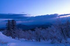 冰和雪世界风景  图库摄影