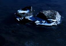 冰和雪世界 免版税库存图片