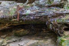冰和水在砂岩岩石在森林里 库存照片