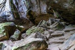 冰和水在砂岩岩石在森林里 免版税图库摄影