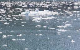 冰在阿拉斯加流动 库存照片