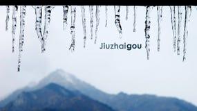 结冰在jiuzhaigou 免版税库存照片
