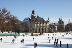 滑冰在varosligeti mujegpalya,布达佩斯,匈牙利, 2015年12月31日 免版税库存照片