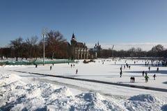 滑冰在varosligeti mujegpalya,布达佩斯,匈牙利, 2015年12月31日 库存照片