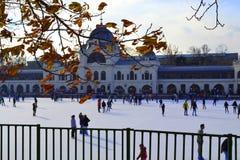 滑冰场布达佩斯 免版税库存照片