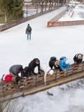 滑冰场的人们在莫斯科 免版税图库摄影