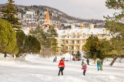 滑冰场的青年人 免版税库存照片