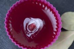 冰块心脏用在果冻的石榴 图库摄影