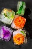 冰块用冷冻五颜六色的熔化在黑暗的石背景的花草本和植物 秀丽,面孔护肤概念 健康 免版税库存图片