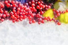 冰块用在玻璃门橱柜和水下落的果子与拷贝空间增加文本 库存照片