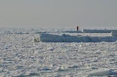 冰孤独的人 图库摄影