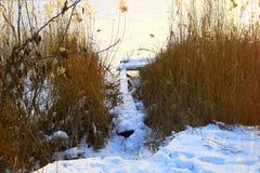 冰封河,钓鱼的木桥 免版税库存照片