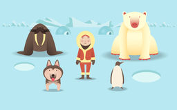 冰少许晚上北部企鹅极 库存照片